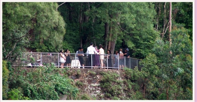 wedding ceremony at Purlingbrook Falls lookout Springbrook Gold Coast